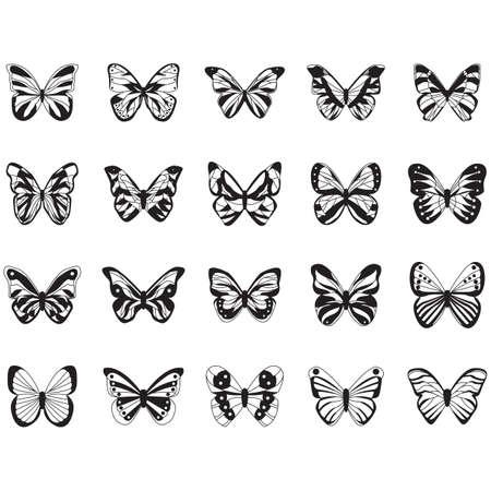 Set di farfalle Archivio Fotografico - 81537935