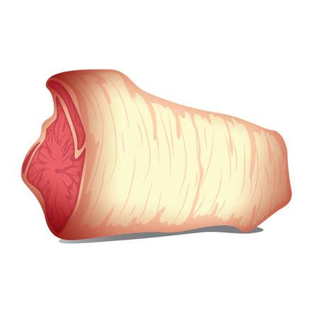 meat Reklamní fotografie - 106672648