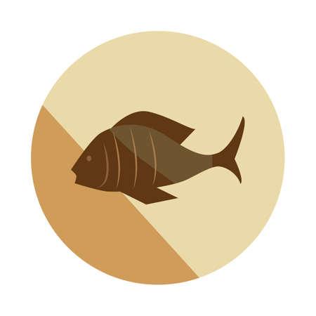 fish Archivio Fotografico - 106673024