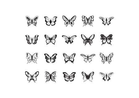 collection of butterflies Фото со стока - 81536347