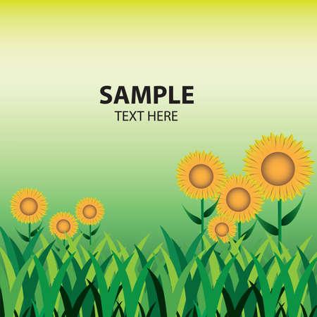 sunflower field landscape Illustration