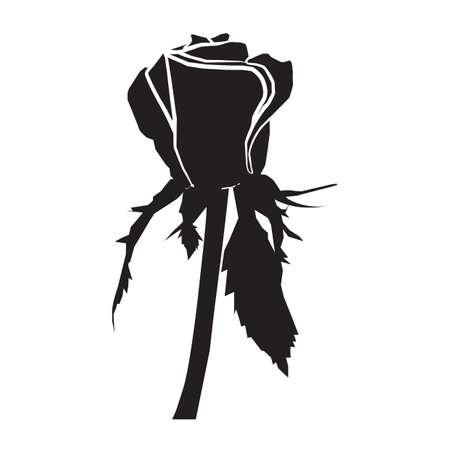 Rose-Symbol Standard-Bild - 81536261