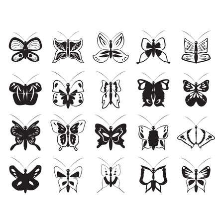 나비 컬렉션 스톡 콘텐츠 - 81536555