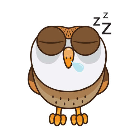 Owl sleeping