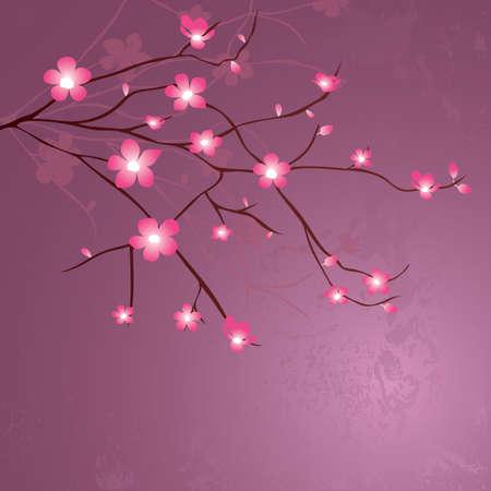 Een kersenbloesem bloeit illustratie.
