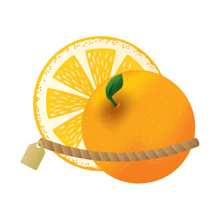 orange tied up with tag Illustration