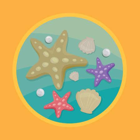 조개 및 별빛 물고기 일러스트