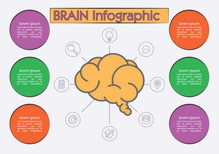 Brain infographic Иллюстрация