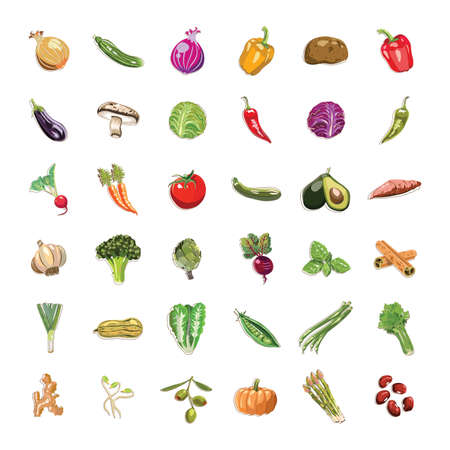 vegetable and fruit collection  イラスト・ベクター素材