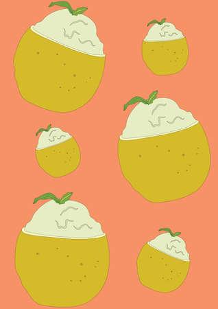 citrus dessert background Ilustrace