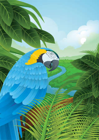 parrot in a rainforest