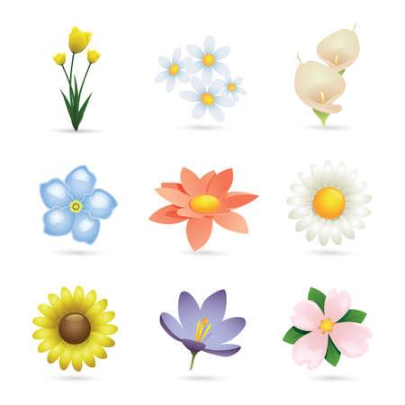 Ensemble d'icônes de fleurs Banque d'images - 81419852