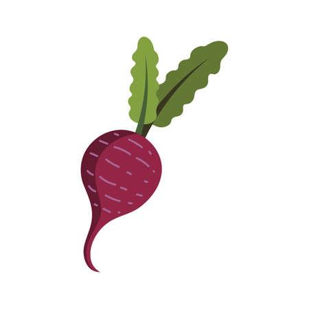 Turnip Ilustração