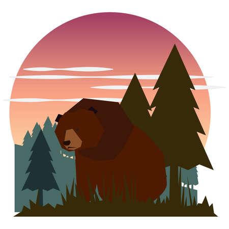 Bear cartoon Illustration