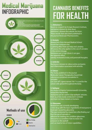 의료 마리화나 infographic 디자인 일러스트