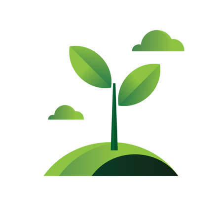 environmental awareness: young plant with leaves