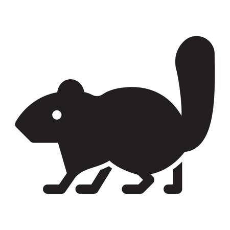 omnivorous: Squirrel on a white background