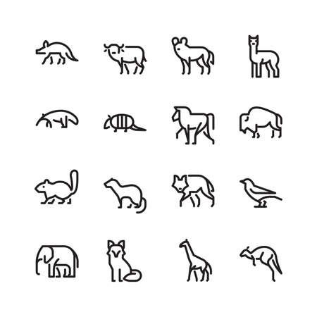 動物のコレクション