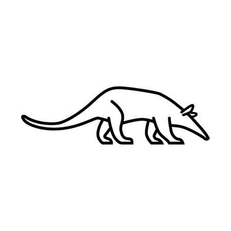 aardvark Illustration