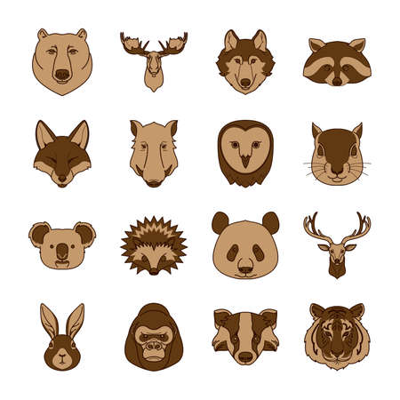 collection of animals