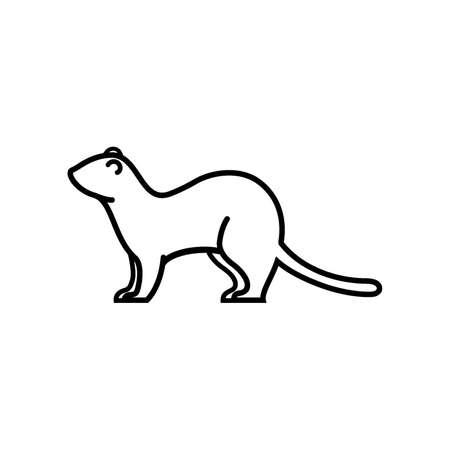 weasel Illustration