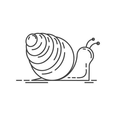 snail 向量圖像