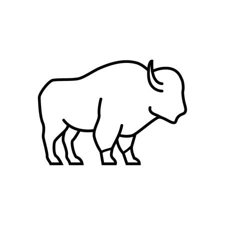 bison Çizim