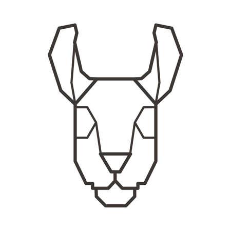 wallaby: Wallaby head