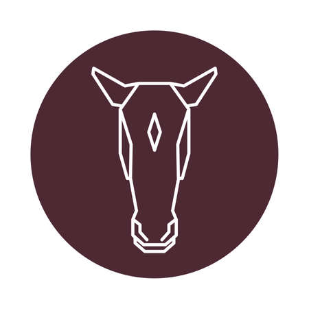 Pferdekopf Standard-Bild - 74131651