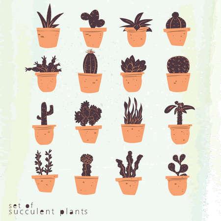 Set of succulent plants icons