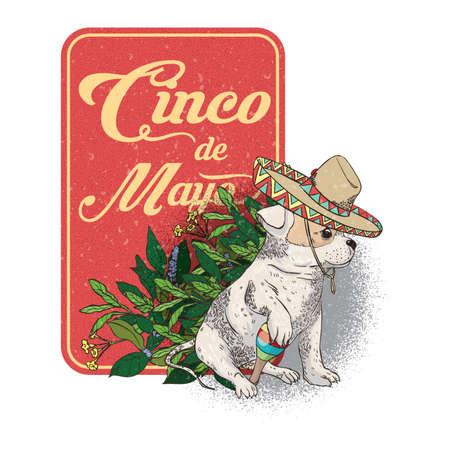 traje mexicano: Cinco de mayo diseño Vectores