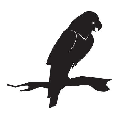 wing span: silhouette of bird