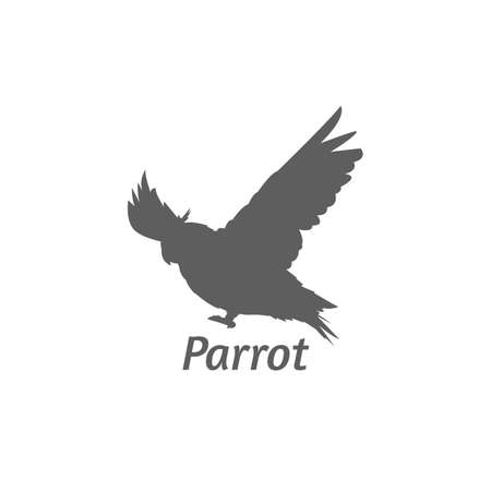 soar: silhouette of a parrot