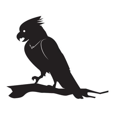 osprey: silhouette of bird