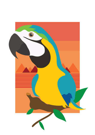 macaw: blue and gold macaw