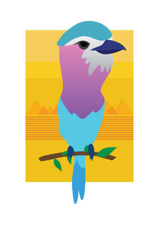 range: Lilac breasted roller bird