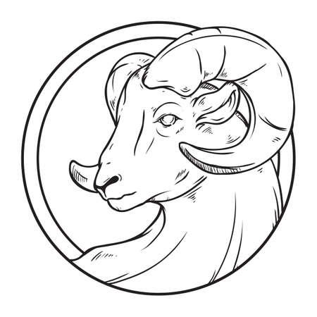 Aries Ilustração