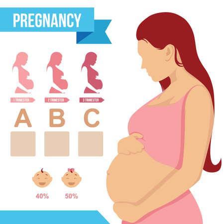 Zwangerschap infografisch ontwerp