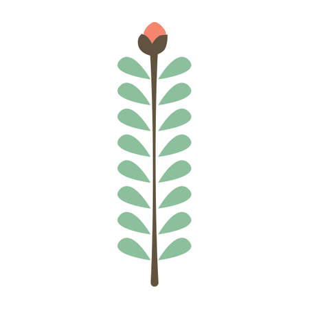 the sprouting: plant concept