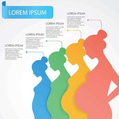 Conception infographique des étapes de grossesse.