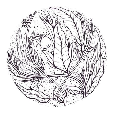 複雑な葉のデザイン