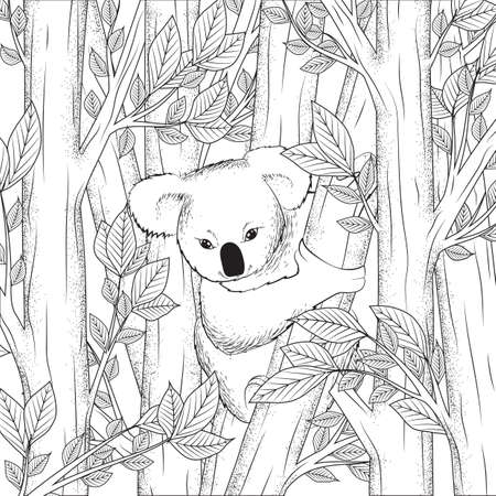 Koala bear on tree design vector illustration