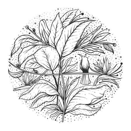 Intricate floral design 版權商用圖片 - 77437052