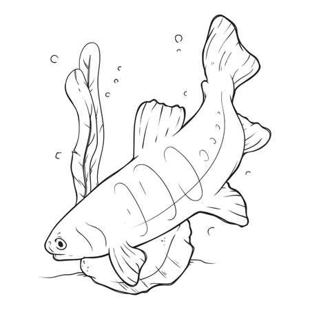 fish tail: fish swimming design