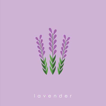 ラベンダー色の花  イラスト・ベクター素材