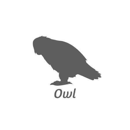 Silhouette of owl