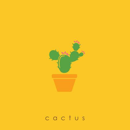 Kaktuspflanze Standard-Bild - 77318042