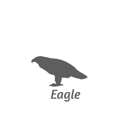 Silhouette of eagle