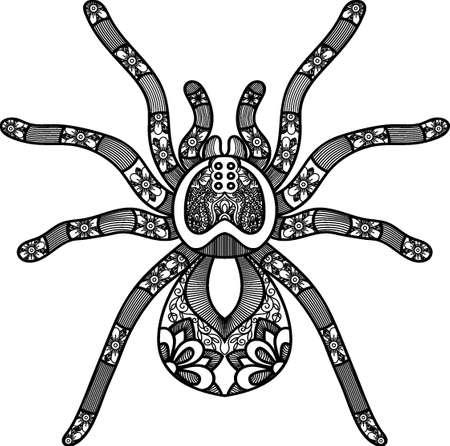 intricate spider design Illustration