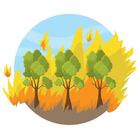 fuoco boschivo